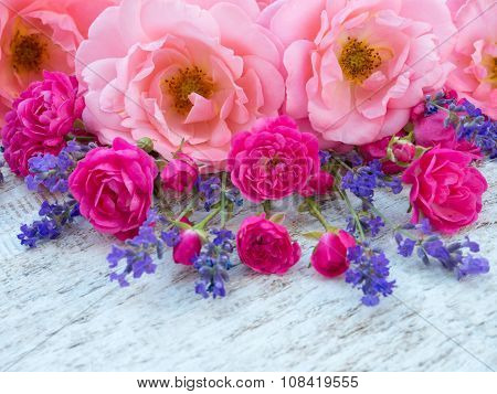 Pink Curly Roses, Small Vibrant Pink Roses And Provence Lavender