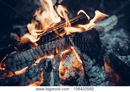 Burning Wood And Coa