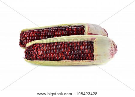 Red Glutinous Corn With Shell On White Background