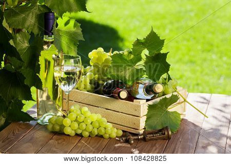 White and red wine bottle, glass, vine and bunch of grapes on garden table