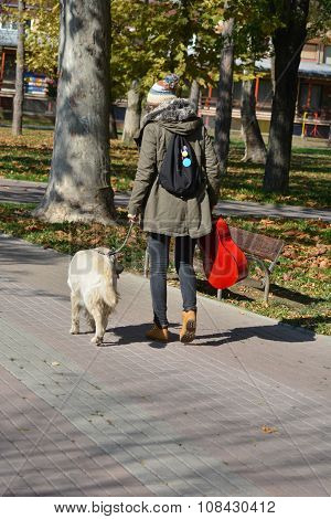 Girl And Dog Walking