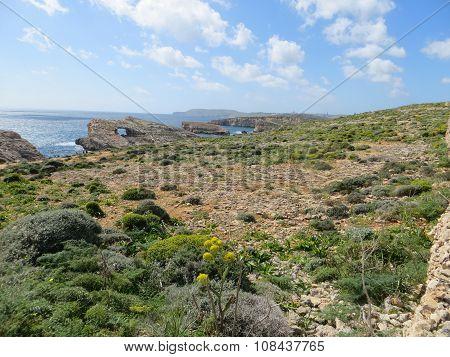 Comino island landscape