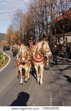 Schliersee, Germany, Bavaria 08.11.2015: Draft Horses in Schliersee in Leonhardifahrt