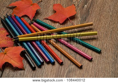 Pencils Of Different Colors And Autumn Leaves On The Table