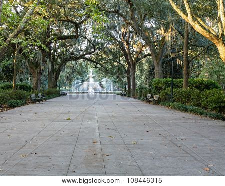 Morning Light In Forsyth Park