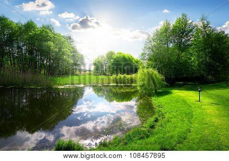 Green park near river