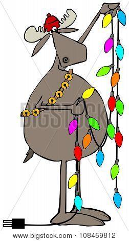 Moose handling Christmas lights