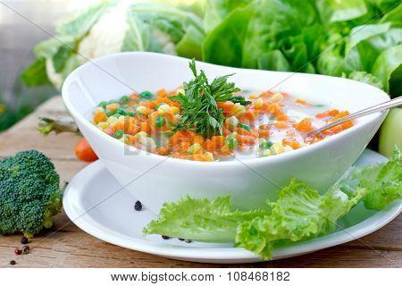Healthy food - delicious vegetable soup