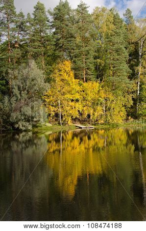 Autumn Colour By The River