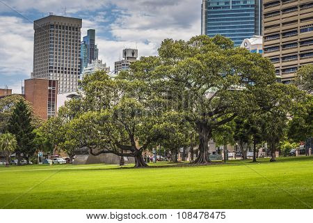 Sydney, Australia - October, 27: Shady Park - A Place For Recreation For People. Sydney's Eastern Sk