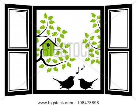 Birds In The Window