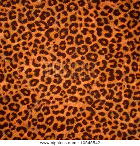 Leopard Skin Background Or Texture