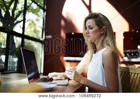 Charming Sweden woman holding cup of coffee while concentrated reading text on net-book