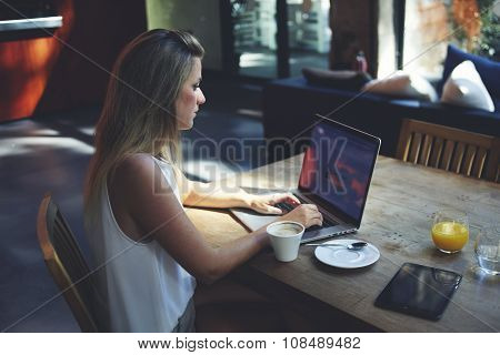 Portrait of intelligent female sitting front laptop computer with copy space screen