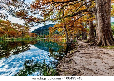Burnt Orange Fall Colors on the Frio River at Garner State Park, Texas