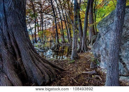Fall Colors at Garner State Park, Texas
