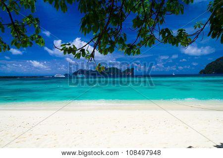 Green Getaway Idyllic Coast