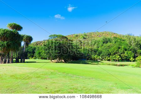 Grass Fairway Green