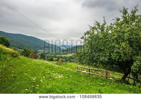 Fence Near Apple Tree On Hillside Meadow In Mountain