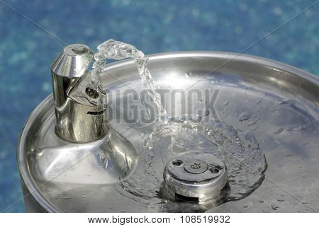 water to drink in a fountain trough