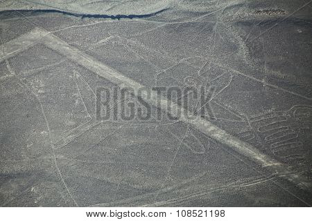 Aerial View Of Nazca Lines -  Whale Geoglyph, Peru.