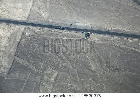 Aerial View Of Nazca Lines - Tree And Hands Geoglyphs, Peru.