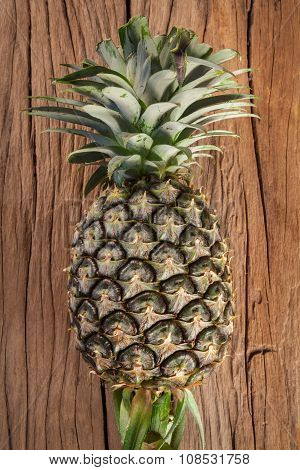 Pineapple On The Wood