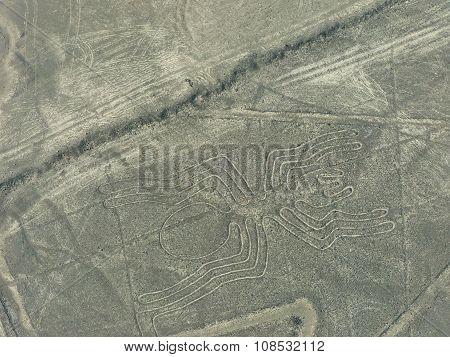Aerial View Of Nazca Lines - Spider Geoglyph, Peru.