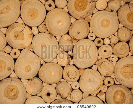 Tree Wood Brown Circle Stumps