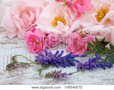 Pale Pink And Bright Pink Roses And Tufted Vetch