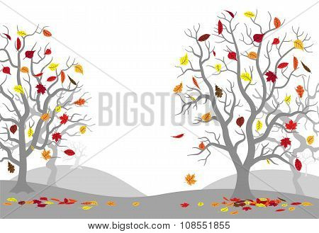 Autumn Forest With Falling Leaves