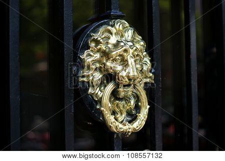 Lionhead doorknocker