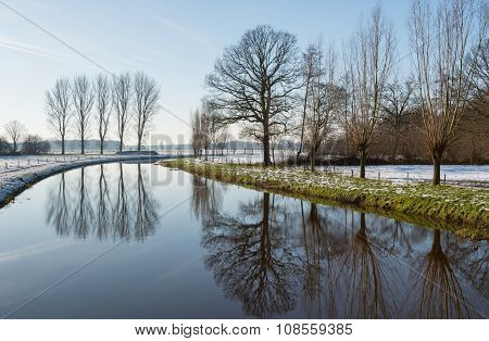 Reflected Tree Silhouettes In Wintertime