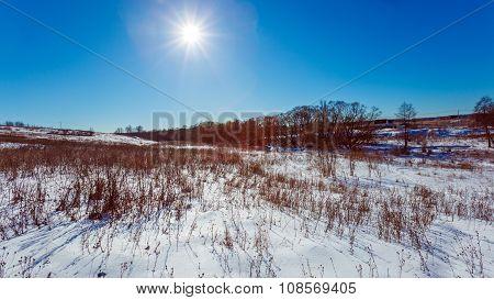Sunlit White Snowy Field