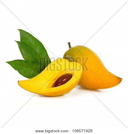 Yellow Fruit On White Background, Fresh Pouteria Campechiana Tropical Fruit In Asia