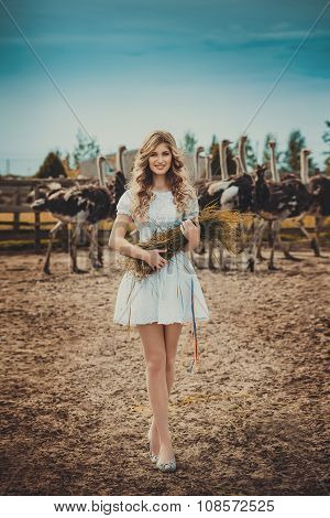 Beautiful young girl and ostrich in the ostrich farm