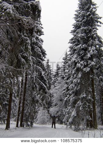 Christmas background with snowy fir trees and man.