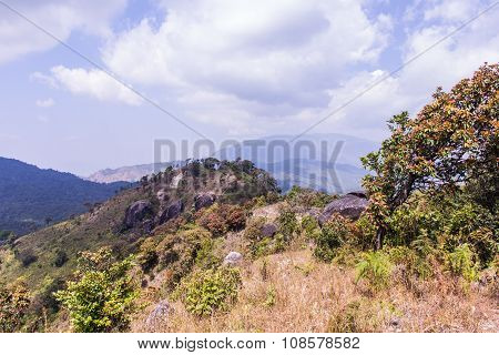 Mountain  In Doi Inthanon, Chiangmai Thailand