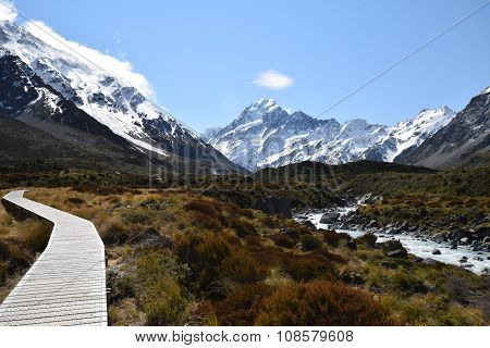 On the path to Mt. Cook