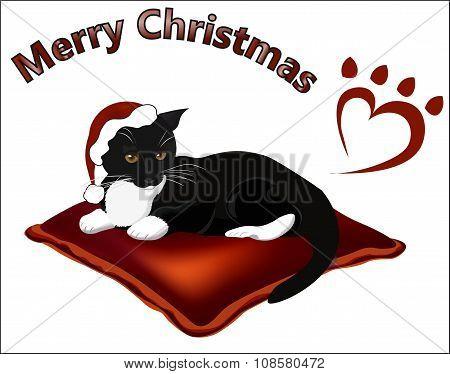 Merry Christmas Black White Cat