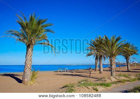 Denia beach palm trees in Alicante in blue Mediterranean of Spain