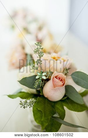 Pink rose background with shallow depth of field and room for text
