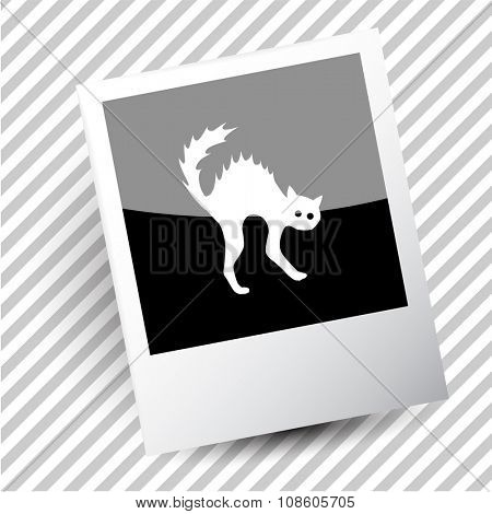 cat. Photoframe. Raster icon.