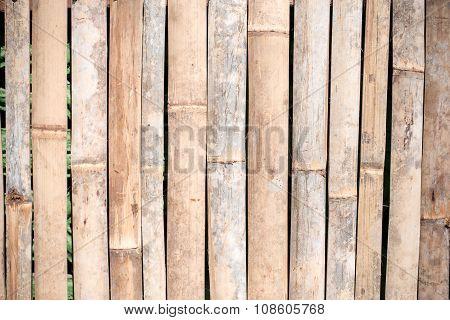 Bamboo fence background.