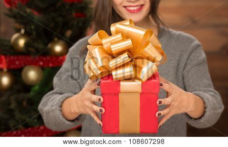 Girl holding a present near New Year tree