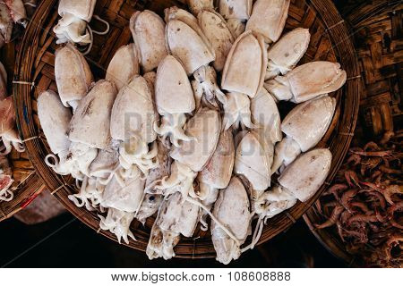 Raw Squids At Asian Street Market