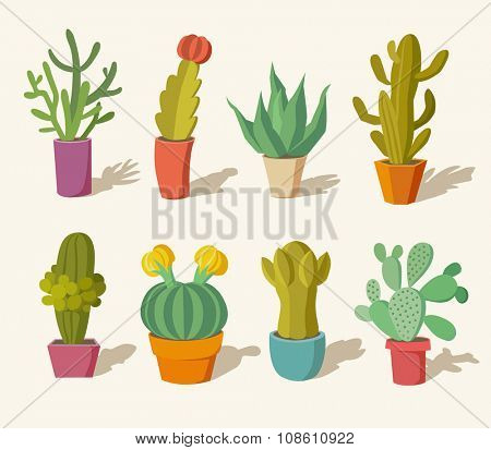Vector collection of cactus in pots