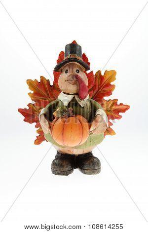 Mr. Pilgrim Turkey