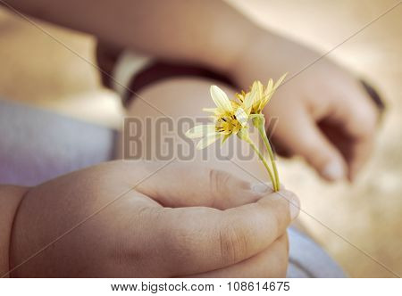 The Hand Of The Child Holds A Flower.