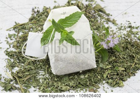Mint Tea Bag And Fresh Mint Plant